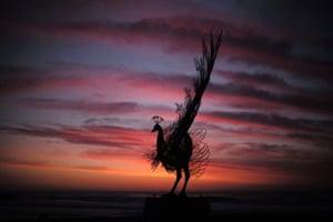 Byeong Doo-moon's bird against the Bondi sky.