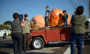 Giant pumpkins, California