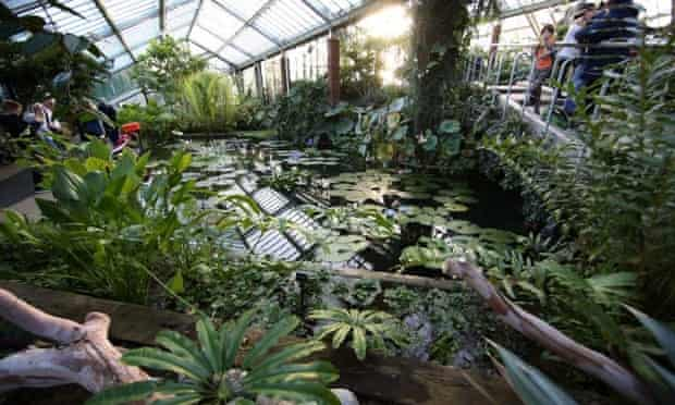 The Princess of Wales Conservatory at Kew Gardens