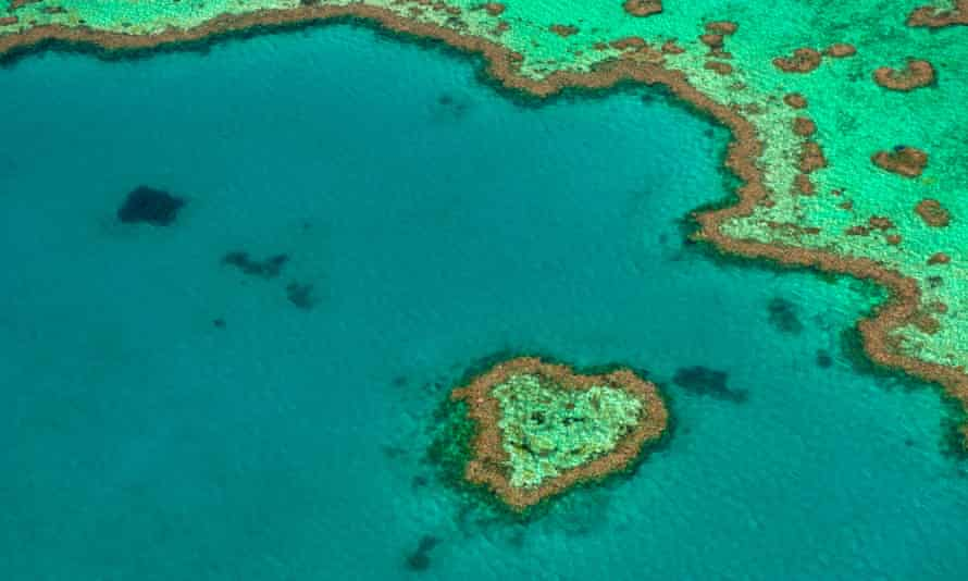 The Great Barrier Reef, UNESCO World Heritage site.