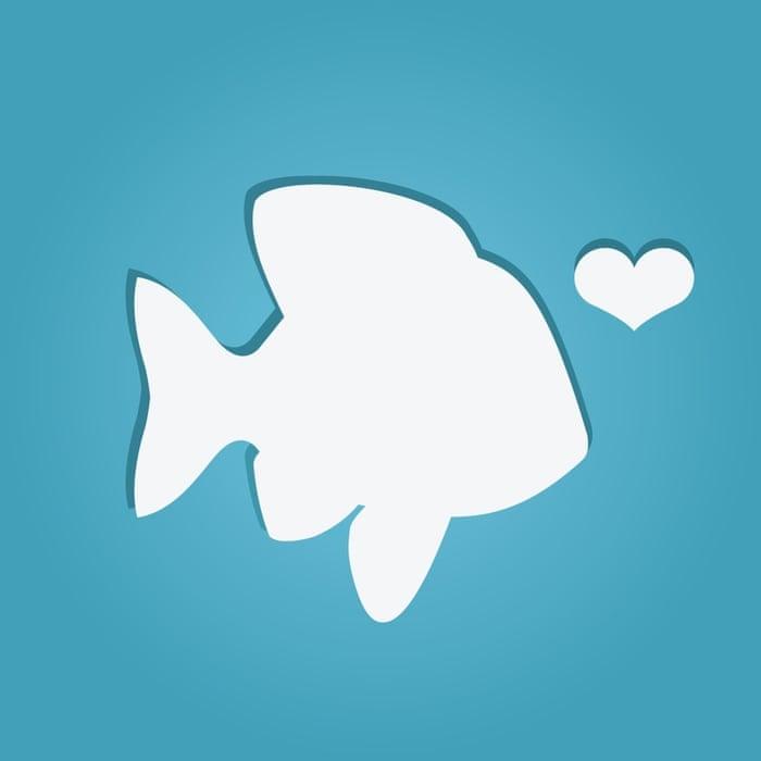 Plenty of fish asian dating