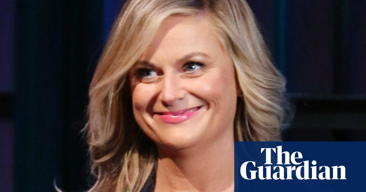 Amy Poehler's Reddit AMA: life advice, pickup lines and 10