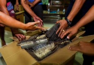 With the haul mounting, Mr. Big (who we   ve discovered is a local seafood restaurant owner named Suep, and one of Surabaya   s four leading manta traders) faces a maximum fine of US$ 25,000 for the sale and possession of manta ray gills. There   s also a likely US$ 10,000 fine for trading in turtle meat, as well as a possible prison sentence of five years.