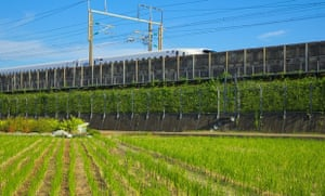 'There are plenty of rice fields near to my relatives house in Japan. There is also a Shinkansen line that passes nearby. Capturing the two together made for a pleasing photo.'