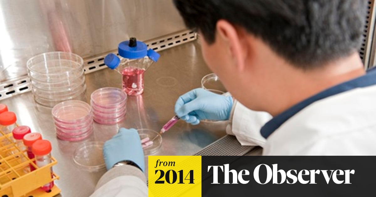 Scientists ready to test lab-grown penises on men | Science | The