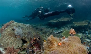 Catlin Seaview Survey is mapping the planet's coral reefs using cutting edge technology