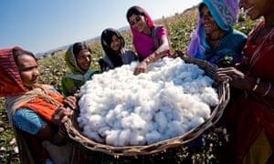 women-cotton