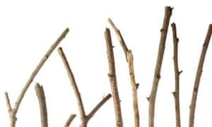 Some wooden twigs