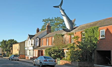 Oxford shark house