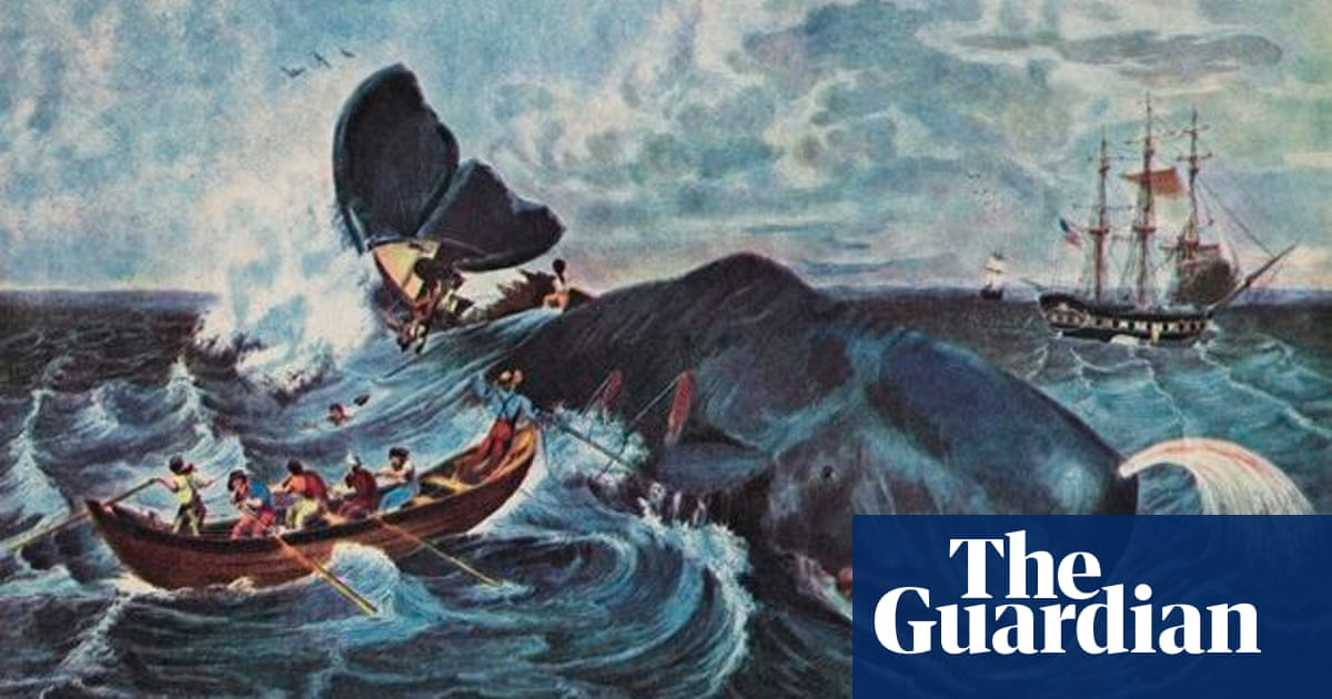 Whale songs: shanties drag mysteries of whaling life back