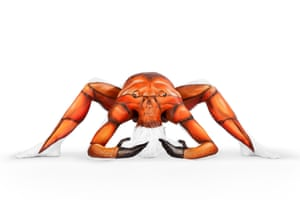 A contortionist takes shape to create a crab