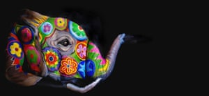 Contortionist and make-up artist Emma Fay pair up to create colourful elephant