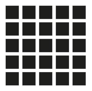Herman grid