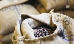 cocoa beans ghana bag