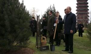 Russian President Vladimir Putin planting trees.