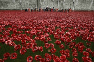 During an Armistice Day ceremony in London, servicemen salute as they stand among the ceramic poppies of the art installation Blood Swept Lands and Seas of Red.