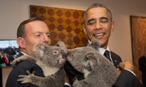In this photo released by G20 Australia and taken on Saturday Nov. 15, 2014, U.S. President Barack Obama, right,  and Australia's Prime Minister Tony Abbott hold koalas during a photo opportunity on the sidelines of the G-20 summit in Brisbane, Australia.  (AP Photo/G20 Australia, Andrew Taylor )
