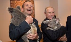 Vladimir Putin meet Jimbelung the koala before the start of the first G20 meeting on November 15.