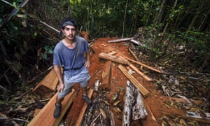 A naturalist and expedition guide stands on a pile of timber illegally logged from the Amazon rainforest in Peru.