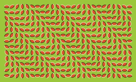 Visual illusion by Ritsumeikan University psychology professor, Akiyoshi Kitaoka.