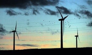 A flock of birds flies past wind turbines in the evening light, at Scottish Power's Dun Law windfarm south of Edinburgh.