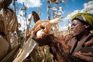 Smallholder by Hailey Tucker, Tanzania