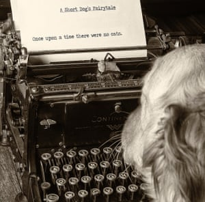 Dog with typewriter