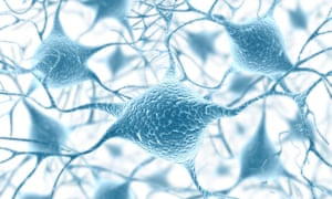 An artist's impression of a network of neurons in the human brain