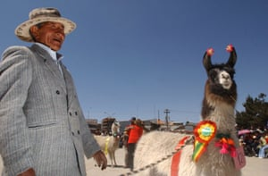 Delighted llama farmer Emilio Laura, 71, with a prize-winning beast at the second interdepartmental camelids fair in the city of El Alto