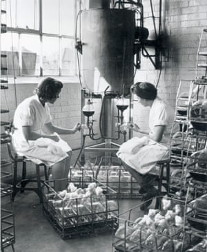 Pharmacists fill culture flasks with the nutrient solution on which the penicillin mould is grown in 1943