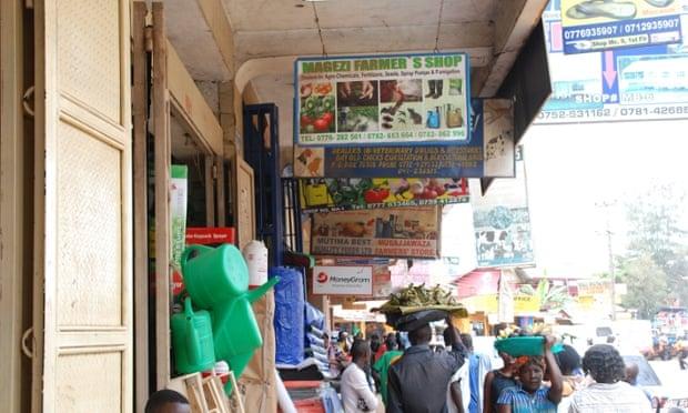 fertiliser in Uganda