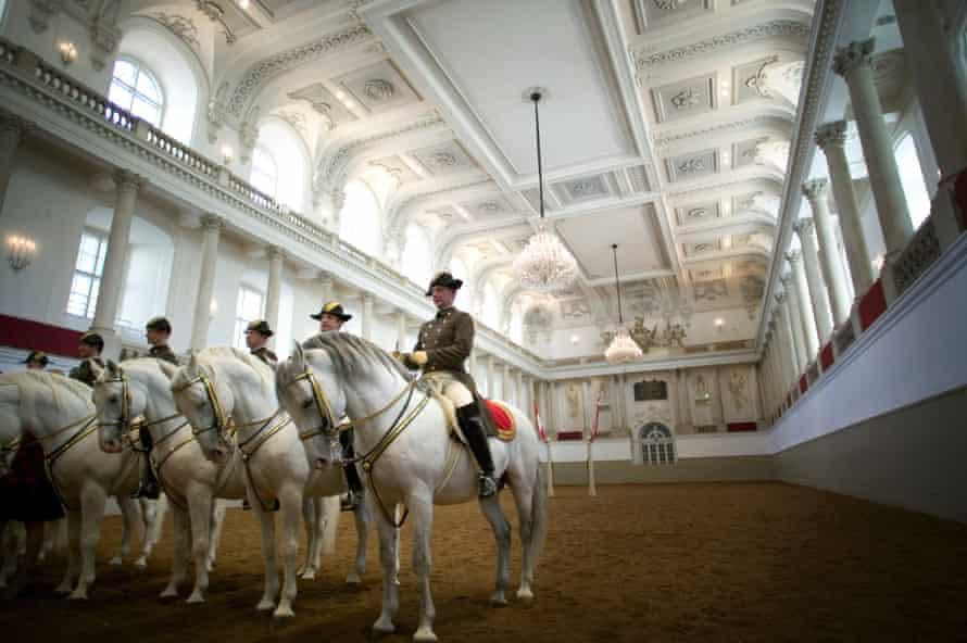 Lipizzaner Stallions at the Spanish Riding School.