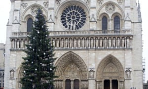 The Christmas tree in front of Notre Dame cathedral in Paris, which reportedly cost €80,000 to trans