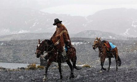 peru horses snow
