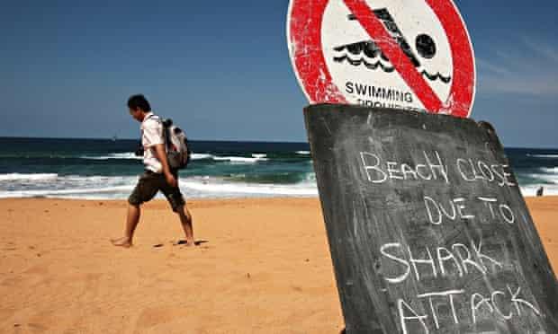 Sydney Beach Closed After Shark Attack