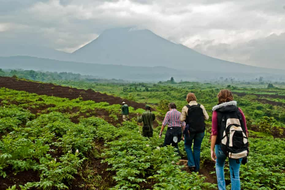 Tourists head towards Mikeno Mountain where gorilla treks begin.