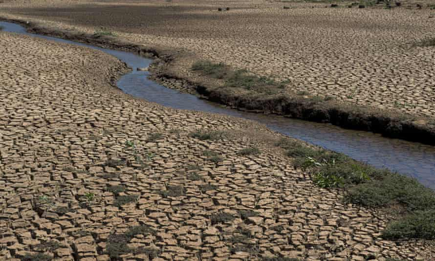 A view of the cracked bed of Jacarei river in Piracaia, during a drought affecting Sao Paulo state, Brazil