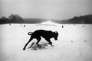 Parc de Sceaux, Hauts-de-Seine, France, 1987