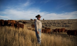 A cattle farm near North Antelope Rochelle mine in Wyoming