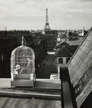 Rue de Vaugirard, Paris, 1931.