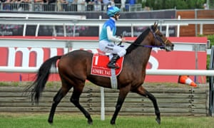 Horse racing industry rejects Melbourne Cup cruelty claims