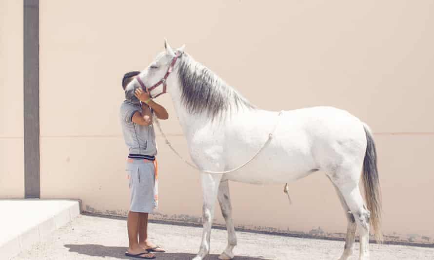 Spanish prison: horse