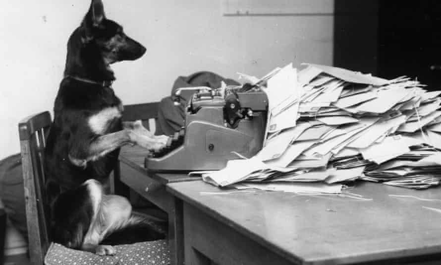 petra typewriter