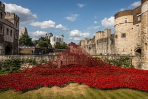 Ceramic Poppies. The first flush of the poppy installation at The Tower of London taken in early August. Macromoments/GuardianWitness