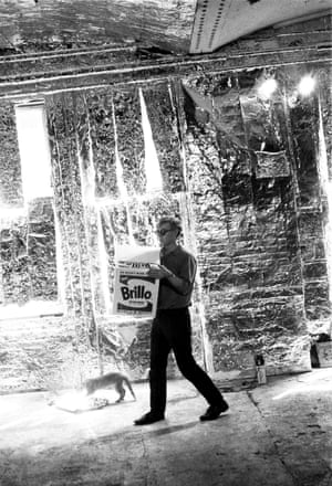 Warhol with cat and Brillo box