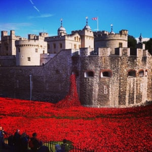 Spilling forth A mass of poppies oozing frrom The Tower