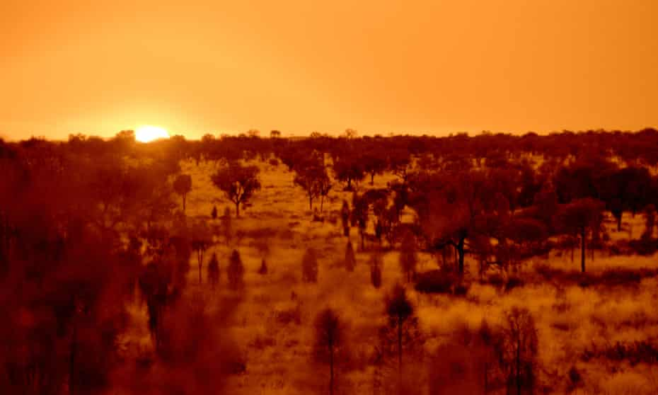 flannery sunset