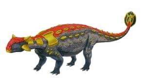 Dino point 7