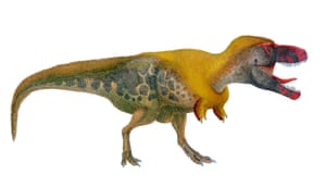 Dino point 8