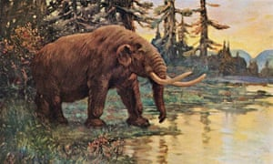 An artist's impression of a mastodon